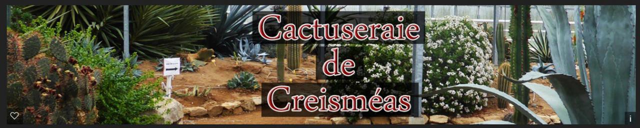 la cactuseraie